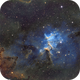 Melotte 15/Heart of the Heart Nebula/IC 1805,                                John Kroon