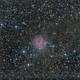 Cocoon Nebula,                                Vencislav Krumov