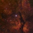 Gamma Cyg Nebula  HSO Version,                                J. Norris