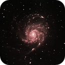 L-eNhanced Messier 101,                                James Muehlner