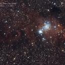 NGC 2264 - Cone Nebula,                                MRPryor