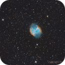 M27 - Dumbbell Nebula,                                Riccardo Cafarelli