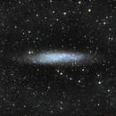 NGC 3109, galaxie spirale magellanique dans la constellation de l'Hydre,                                Roger Bertuli