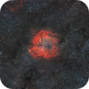 Elephant Trunk Nebula (IC 1396) and surroundings,                                Gregory