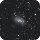 NGC 925 - The Coffee Grinder Galaxy,                                NocturnalAstro