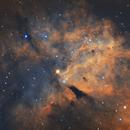 IC1318,                                Sean Molony