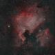 NGC7000 in HOO,                                kribba