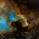 Cygnus Wall,                                Josh Jones