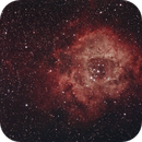 The Rosette nebula,                                Jim Knapp