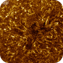 Sunspot AR2737, HA, Colored, Inverted, 04-03-2019,                                Martin (Marty) Wise