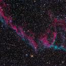 East Veil - Ngc 6995 ,                                Pietro Canepa
