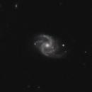 MCG+00-29-017,                                Gary Imm