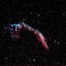 NGC 6992 Nebula,                                SkipRapp