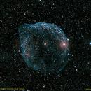 SH2-308 Dolphin Head Nebula,                                Ian Hynes