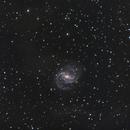 NGC6951,                                Tom Harrison