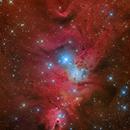NGC 2264, Fox Fur and Cone Nebula Region,                                Alexander Sorokin