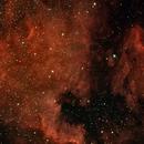 North American and Pelican Nebulas,                                Rick Gaps