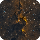 PART OF ELEPHANT TRUNK IC 1396 - Ha + OIII,                                RAMON ESPAX