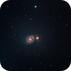 M51, Whirlpool Galaxy,                                Jeremy Miller