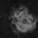Rosette Nebula wide,                                Gerson Pinto