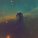 Horsehead Nebula Narrowband Hubble Palette,                                Craig Gardiner