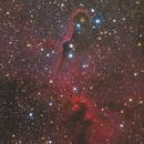 IC1396 Elephant Trunk Nebula,                                Frank Chen