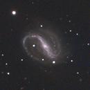 NGC7479 RGB (OSC),                                andrea tasselli