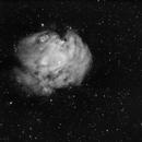 NGC 2175 Monkey Head,                                GregGurdak