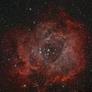 NGC 2237,                                Alan Brunelle