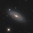 NGC 2841 - Spiral Galaxy,                                Derryk