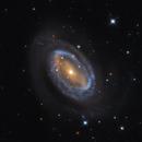 NGC 4725,                                Matt Proulx