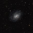 NGC 300,                                Doug Summers