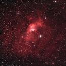 Bubble Nebula,                                puckja