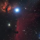 IC 434,                                Bram Goossens