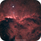 NGC 6188: The Dragons of Ara,                                L. Fernando Parme...