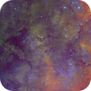 LBN 240 Near Gamma Cyg - Hubble Palette,                                Eric Coles (coles44)