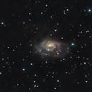 NGC 1961 (Arp 184),                                Ron Stanley