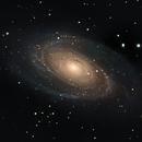 M81 - Bode's Galaxy,                                Timothy Martin & Nic Patridge