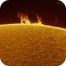 Solar Prominence in Hydrogen Alpha,                                Martin (Marty) Wise