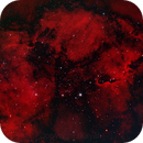 IC 1396 Elephant's Trunk ,                                rkayakr