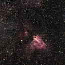 Swan Nebula,                                Jeff Clayton