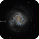 M61 + SN 2020jfo,                                Ulli_K