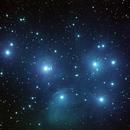 M45,                                Rex Groves
