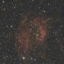 Sh2-261 - Lower's Nebula,                                ippiu