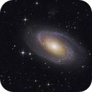 Bode's Galaxy - M81,                                Thomas Richter