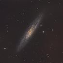 NGC 253  - Galaxia del Escultor,                                Luis Martinez