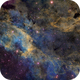 Cygnus Region (IC 1318),                                Tyler Jackson Welch