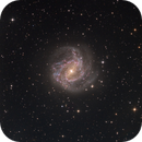 M83 - The Souithern Pinwheel Galaxy,                                Scotty Bishop