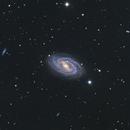 Galaxy M109. When bar rules,                                Simas Šatkauskas