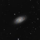 Black Eye Galaxy - M64,                                Giorgio Baj